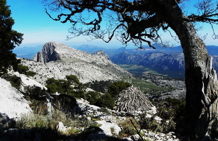 Escursione-Fuoristrada-su-gologone-Sardegna-Nascosta