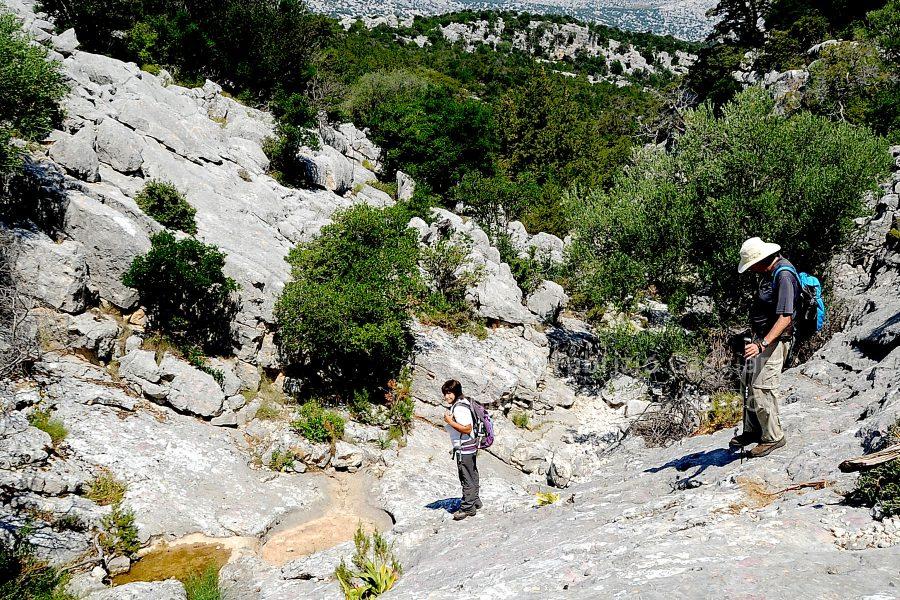 trekking-a-piedi-sardegna-nascosta-centro-escursioni-900×600