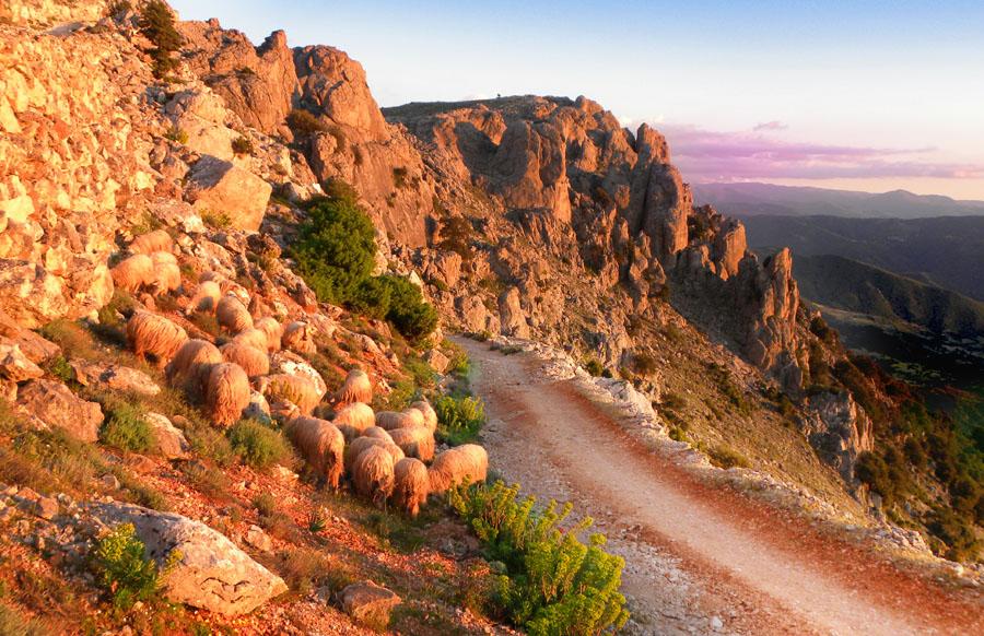 trekking-a.piedi-supramonte-Sardegna-Nascosta